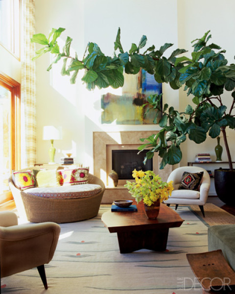 Aesthetically Speaking: Bringing Nature Indoors With The