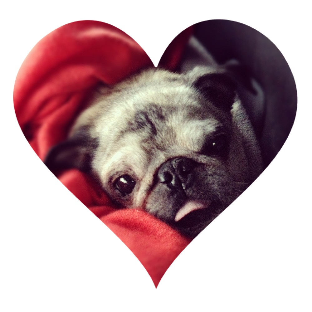 bob heart